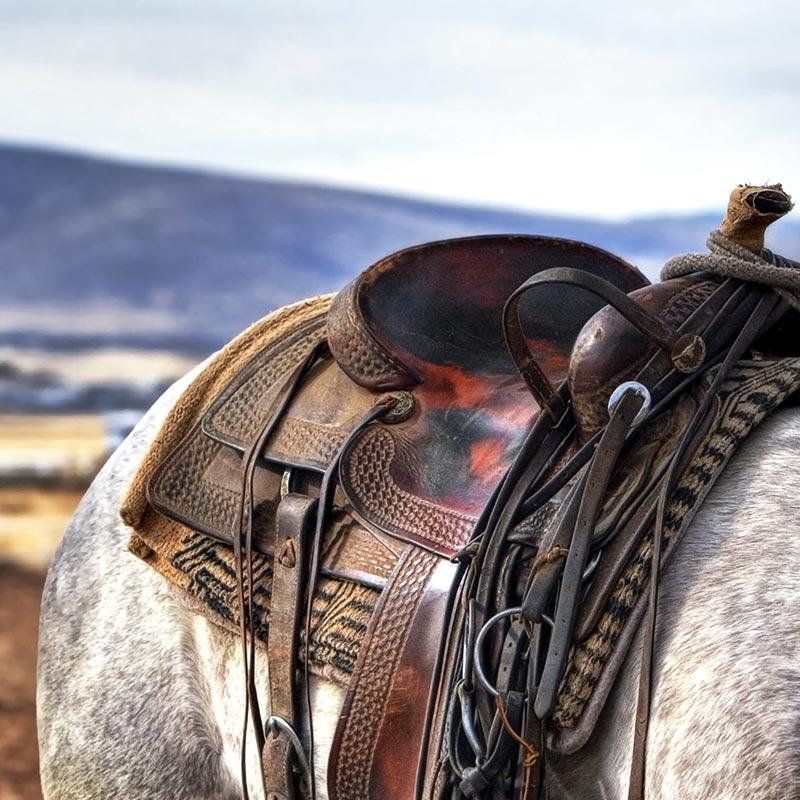 saddle-square
